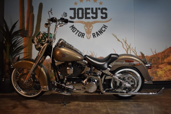 Harley-Davidson-Fatboy-Mexican-style-Viclas-2004