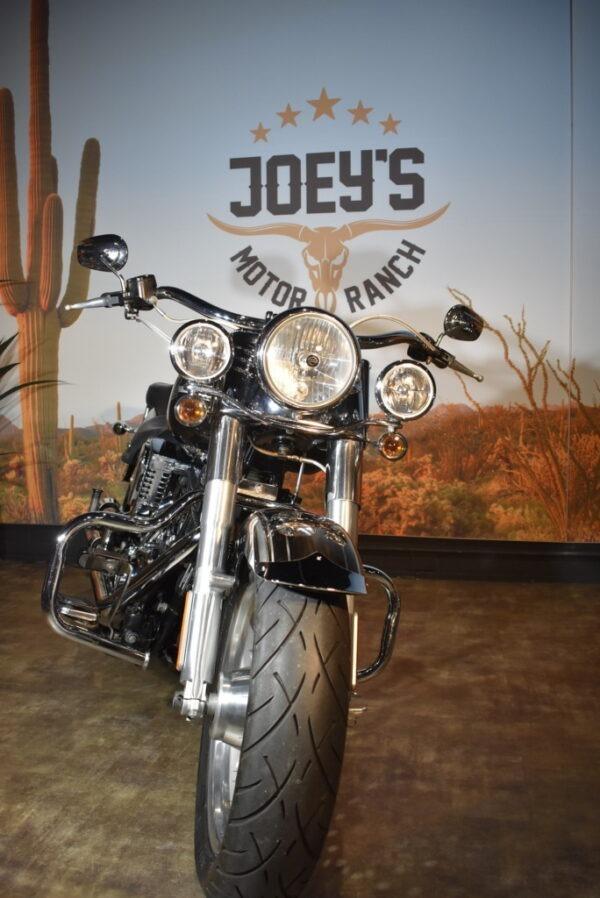 Harley-Davidson-Fatboy-FLSTF-2007 -pecial paint-Apeldoorn