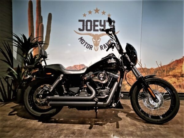 Harley-Davidson-Street Bob-2015-Joey's motor ranch